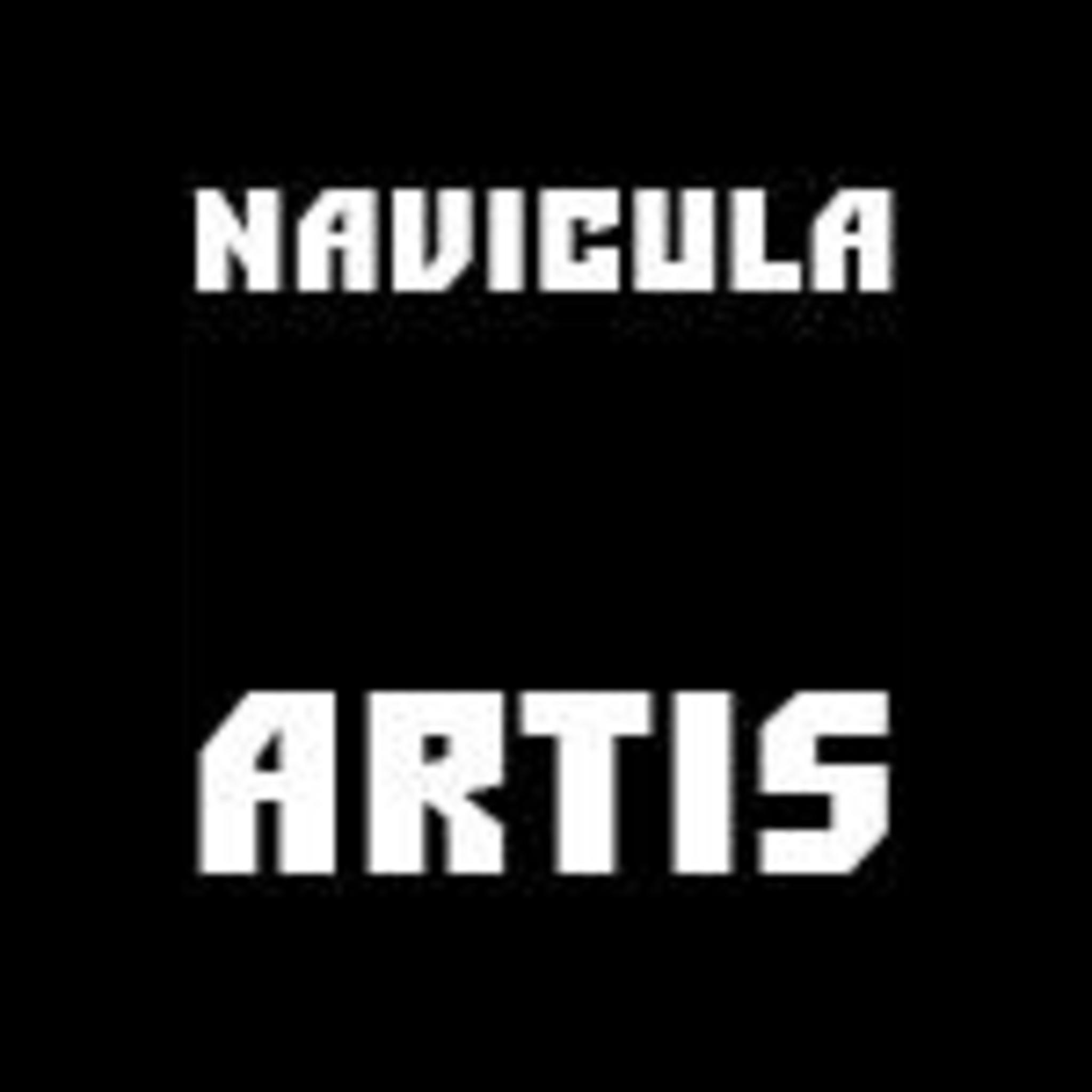 Галерея Navicula Artis