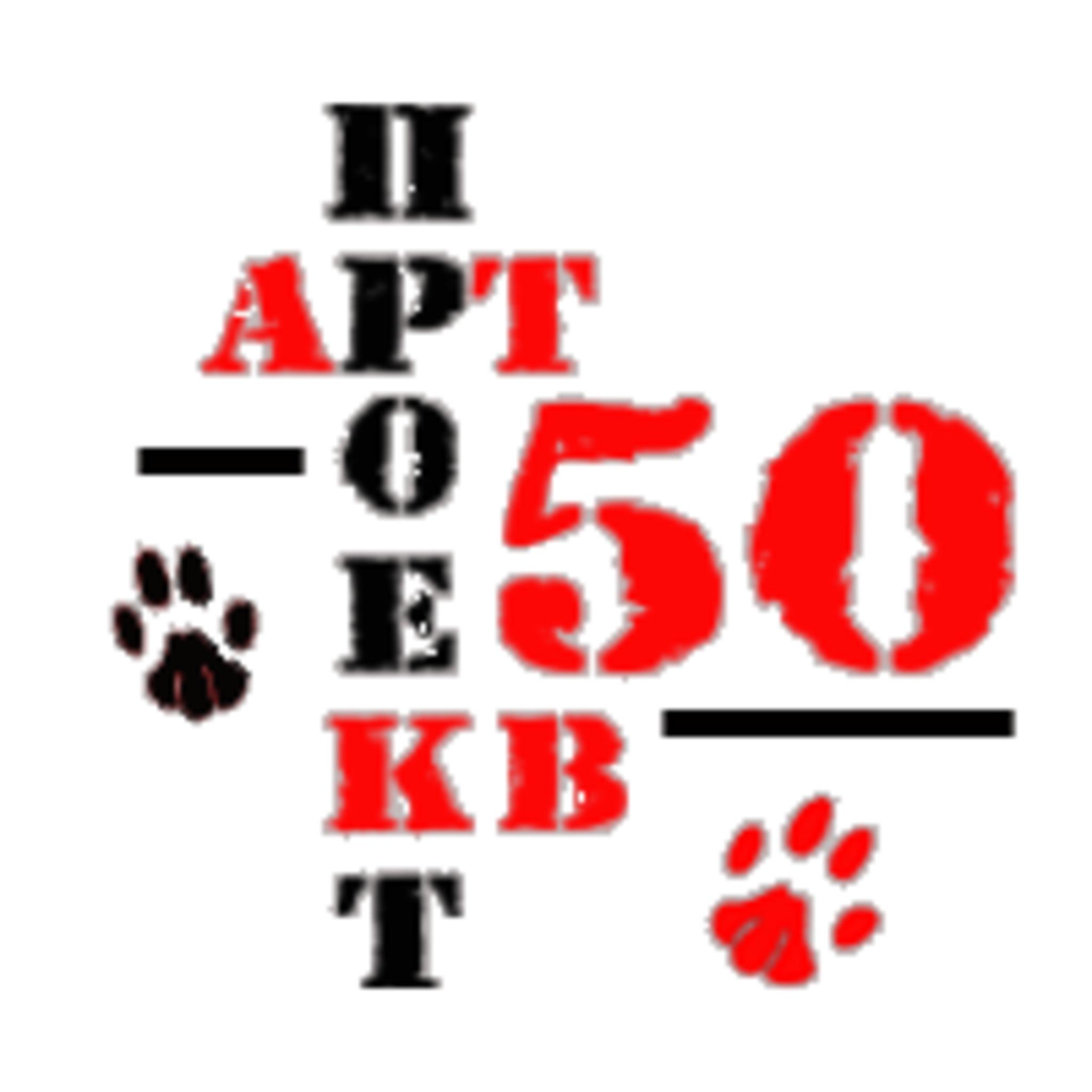 Арт-проект Квартира 50