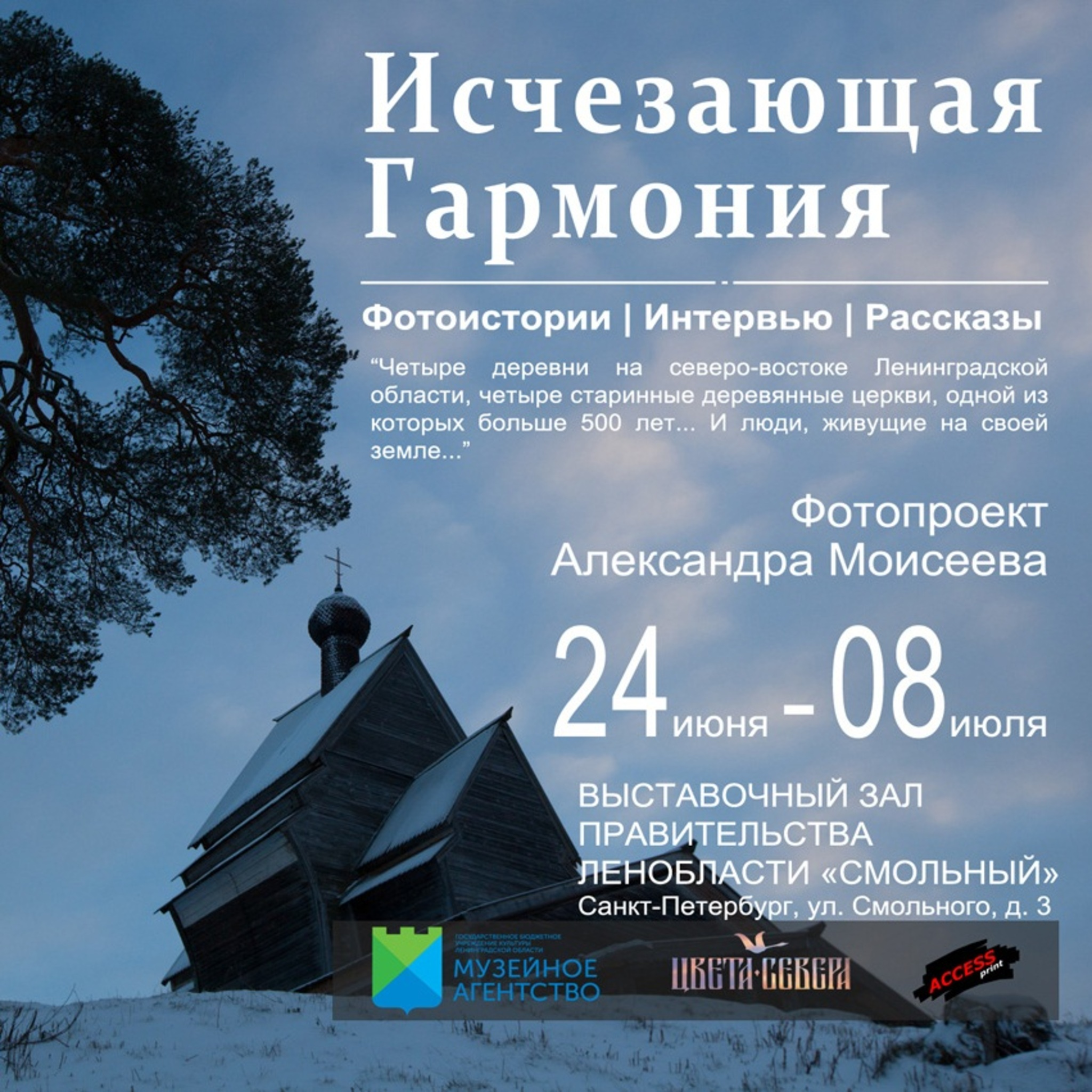Photo exhibition of Alexander Mosaic Disappearing Harmony