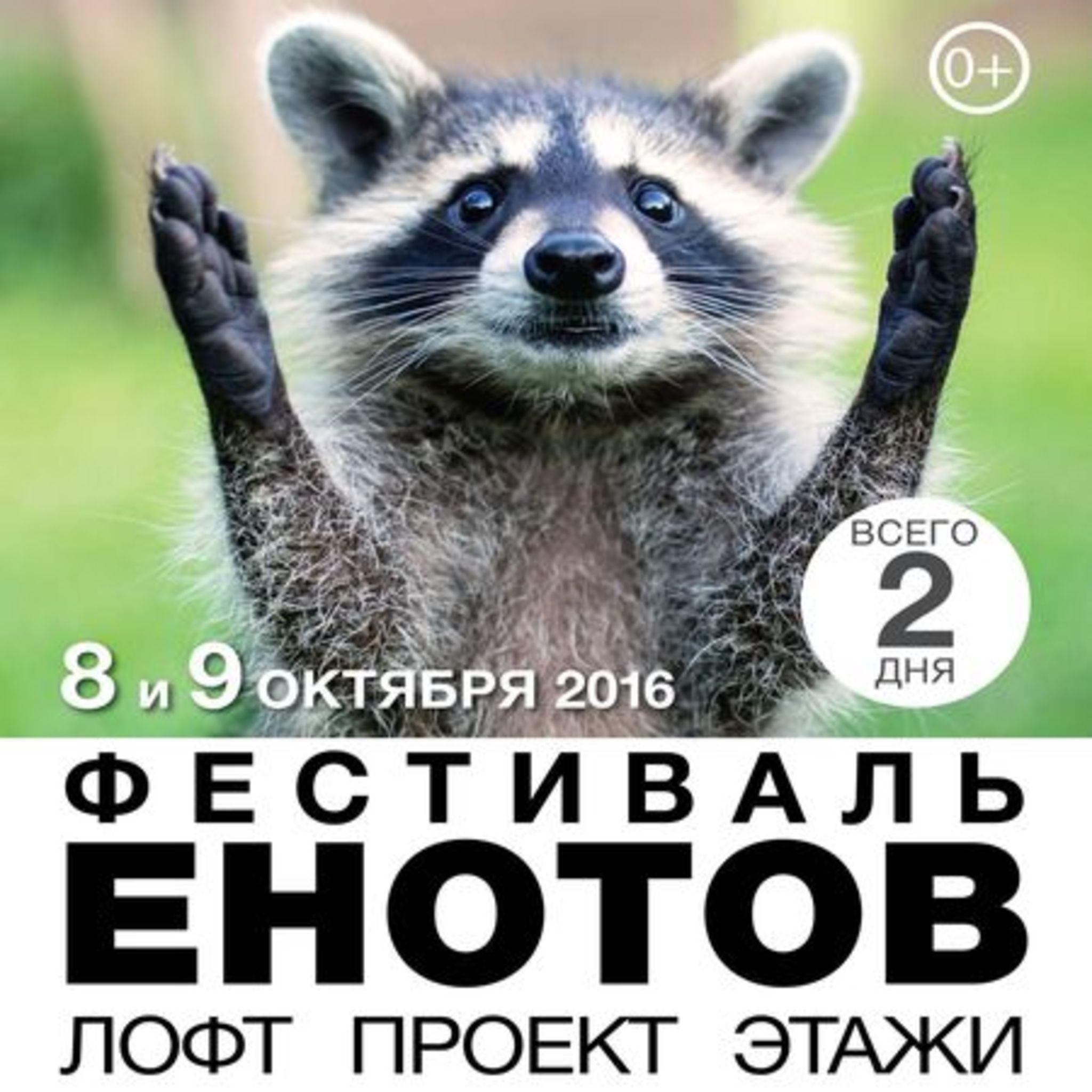 Фестиваль Енотов Лофт Проект ЭТАЖИ