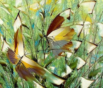 Exhibition-sale of Dmitry Kustanovich's painting Expression of color
