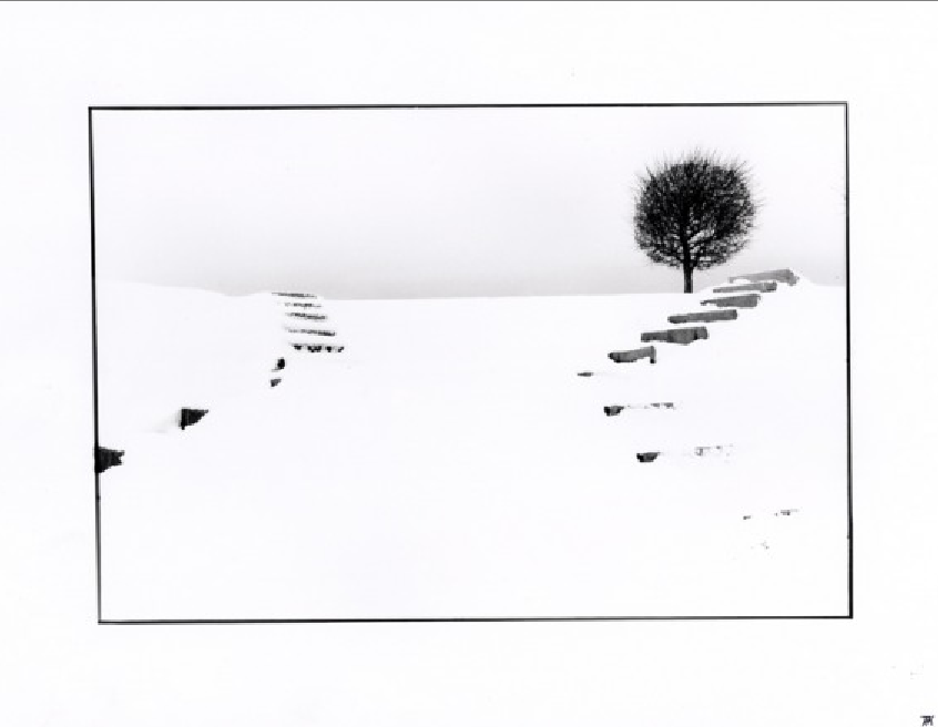 Exhibition «White Melodies»