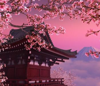 "Bibliotech 2018 ""When Sakura is Flowering"""