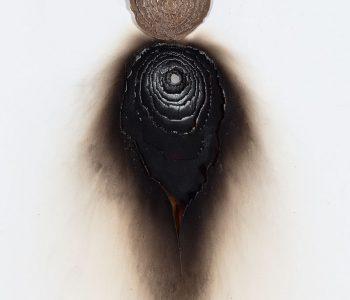 Anna Nova Gallery представит проекты на Cosmoscow и Vienna Contemporary