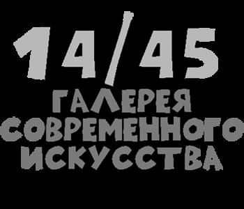 Галерея современного искусства 14/45