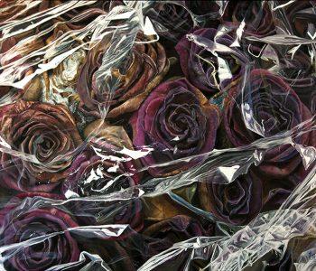 Kate Kamington. Розовый закат