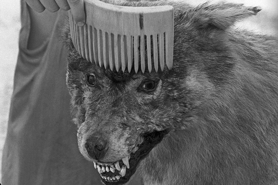 Евгений Юфит. Некрореализм с человеческим лицом